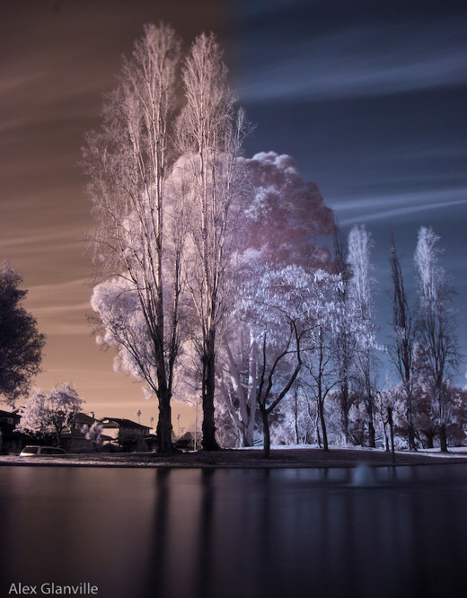 InfraRed Photography Action