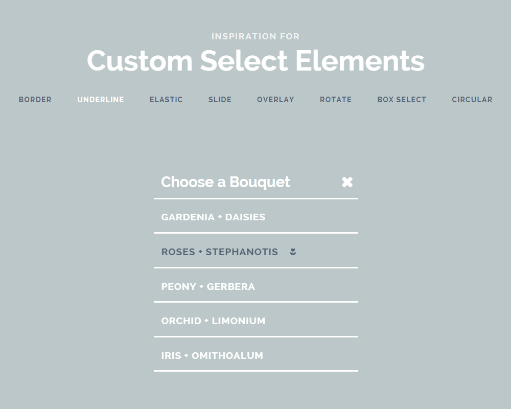 Inspiration-for-Custom-Select-Elements---Demo-2